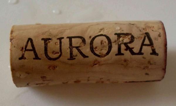 Crescimento de 415%: Valor das Exportações Sobe na Vinícola Aurora
