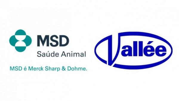 11.07.2018 * Com Vallée, MSD busca acelerar vendas