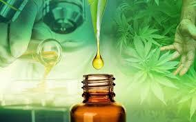 Novo canabidiol chega ao varejo farmacêutico em julho