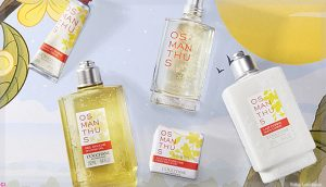 Encante-se pela Osmanthus a nova fragrância de L'Occitane en Provence